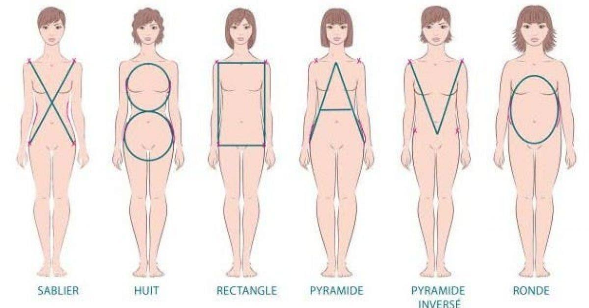 decouvrez quel est votre morphotype pour perdre du ventre rapidement 1