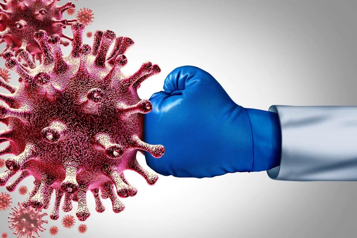 defense immunitaire