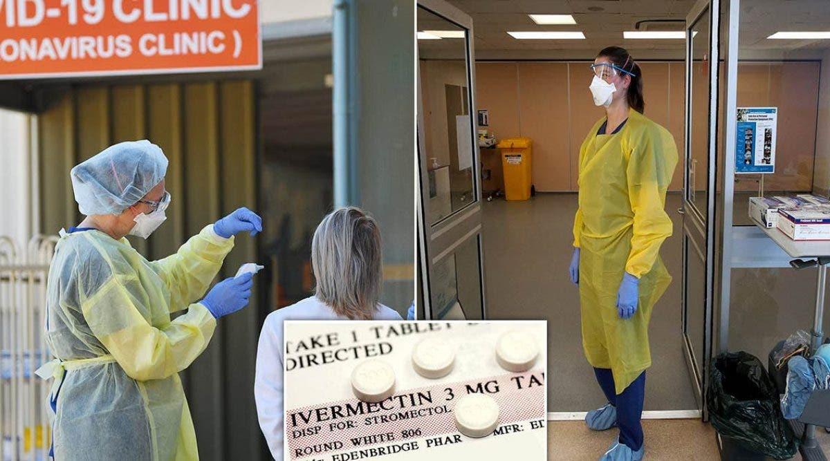 des-scientifiques-australiens-annoncent-quun-traitement-contre-les-poux-serait-efficace-in-vitro-contre-le-coronavirus