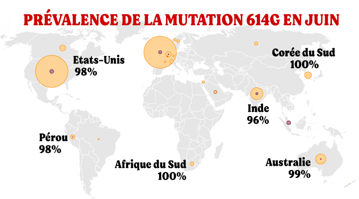 des-scientifiques-estiment-probable-quune-mutation-du-virus-en-debut-de-pandemie-ait-accelere-sa-propagation
