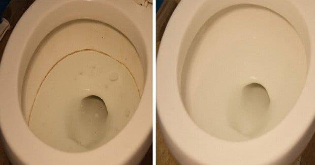 desinfectez efficacement vos toilettes avec ces deux produits naturels 1