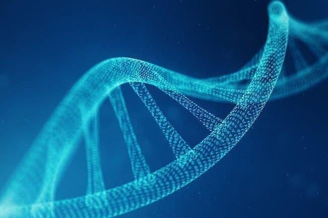 desordre genetique