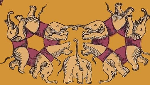 elephants11