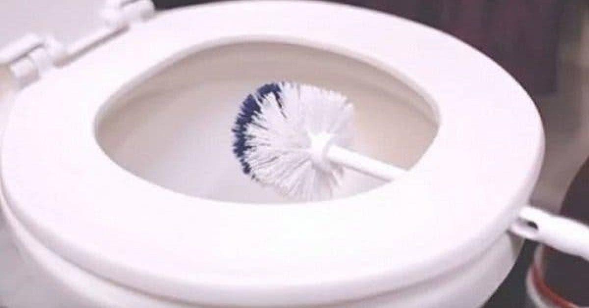 elle a laisse une brosse de toilettes pendant 10 minutes la raison est plus qu ingenieuse2 1