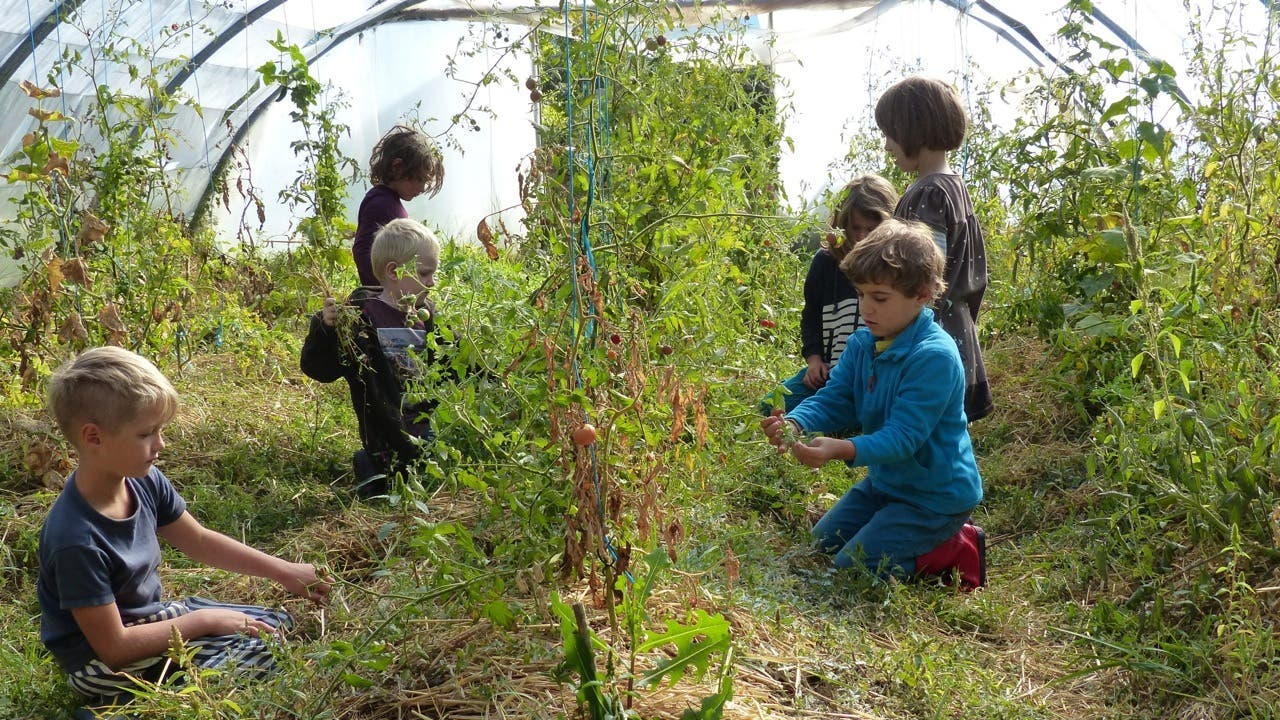 enfants ecole jardin