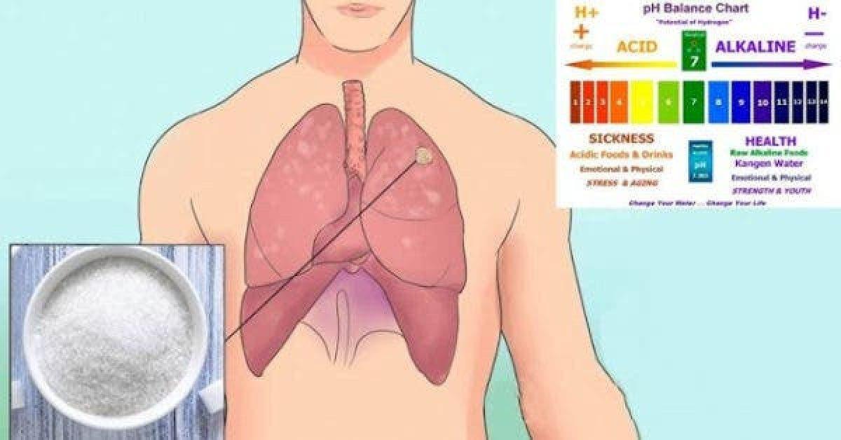 everyone Tout le monde a des cellules cancereuses dans son corps et voici comment prevenir leur transformation en tumeurs 1