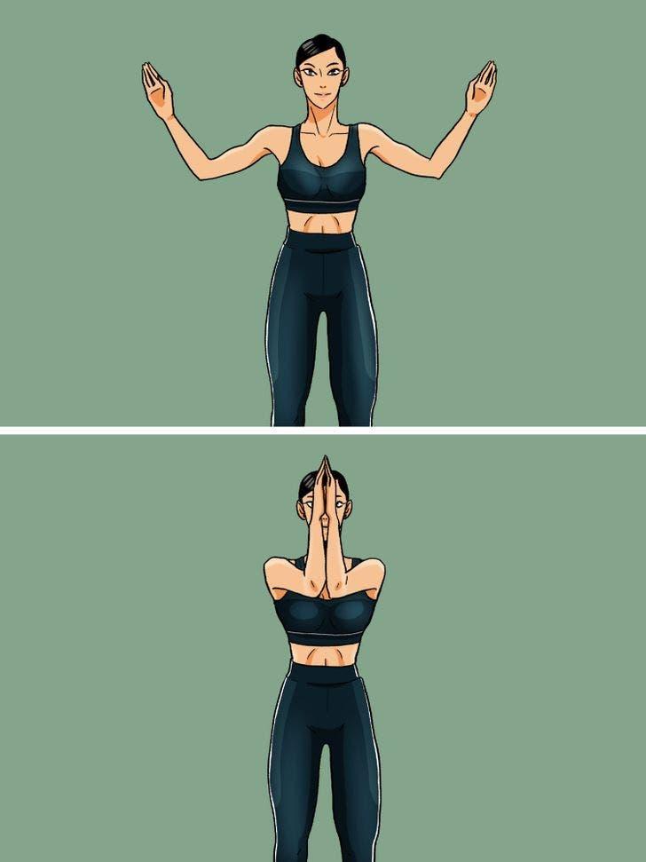 exercice biceps et pectoraux