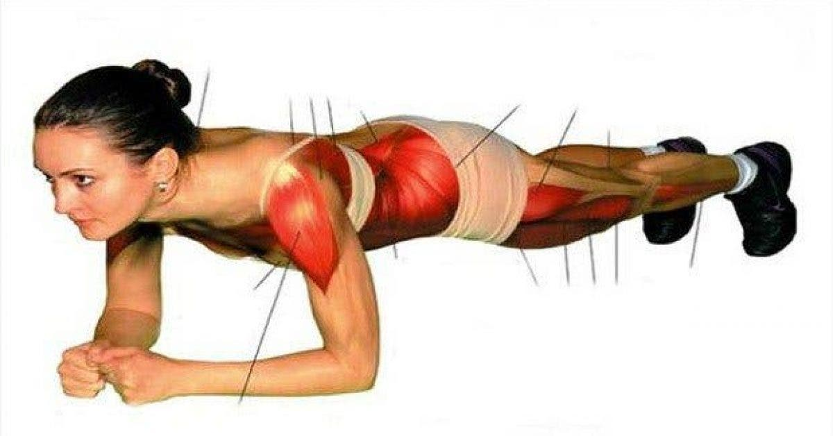 exercice simple pour muscler tout le corps et perdre du poids 1