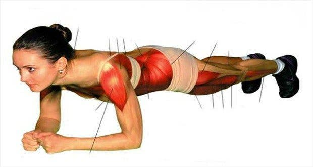 comment muscler le corps