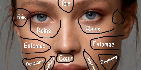 face-mapping--chaque-probleme-cutane-indique-un-probleme-de-sante