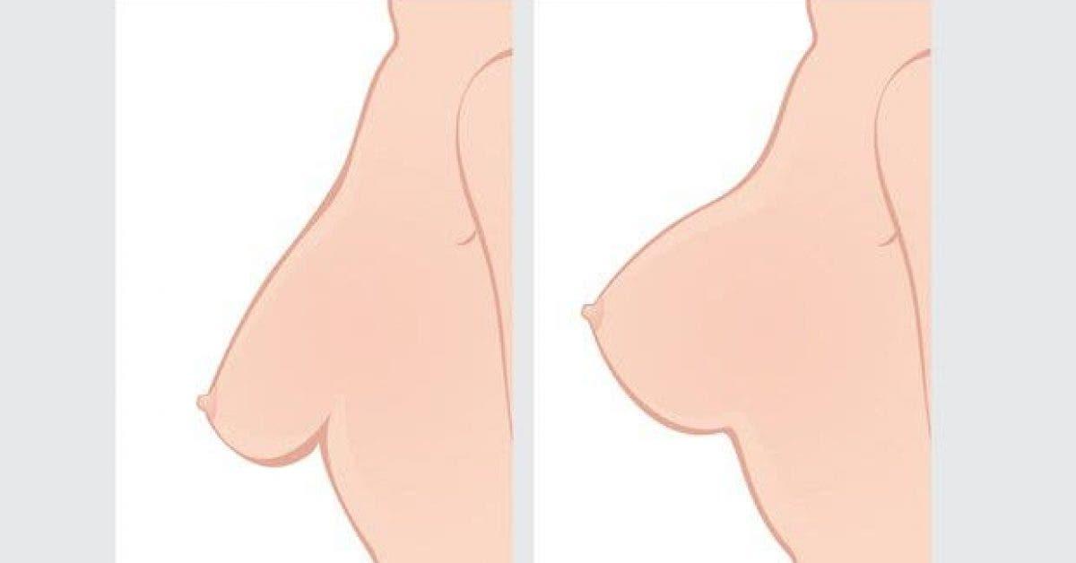 faites cela au moins une fois par semaine pour avoir de beaux seins 1