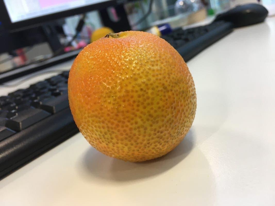 Ou aux oranges…