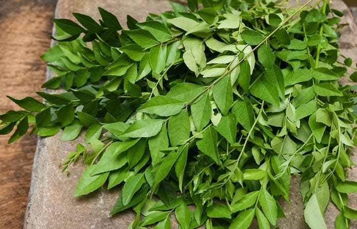 feuillesdecurry