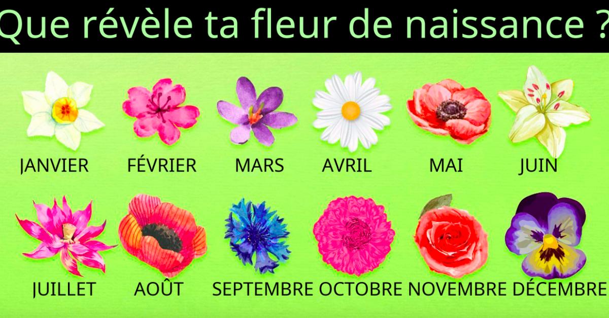 fleurs naissance 1