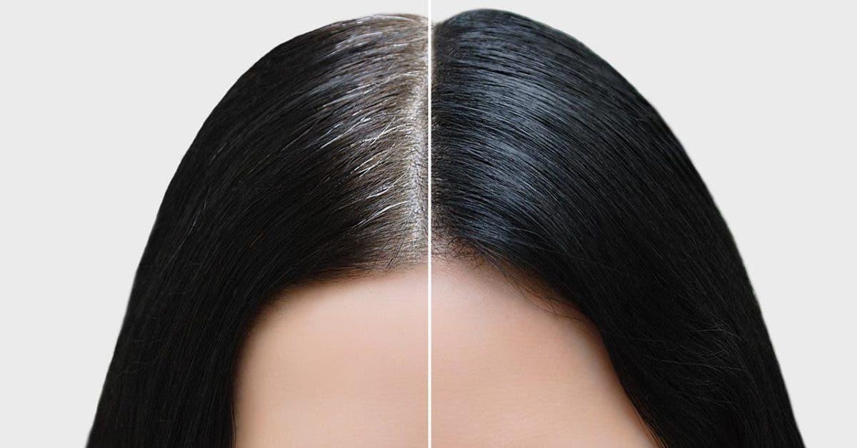 Teinture café et thé vert : foncez vos cheveux sans produits chimiques