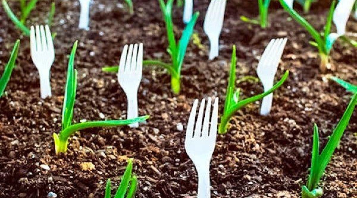 Elle dispose des fourchettes dans son jardin. C'est vraiment une idée de génie !
