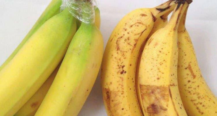 fraicheur plus longues des bananes