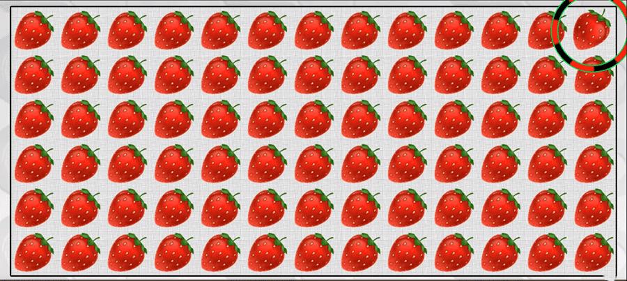 fraiserep