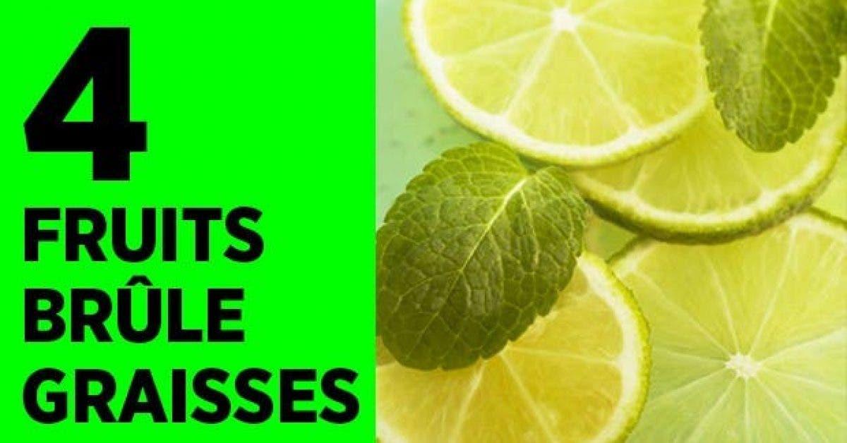 fruit brule graisse11