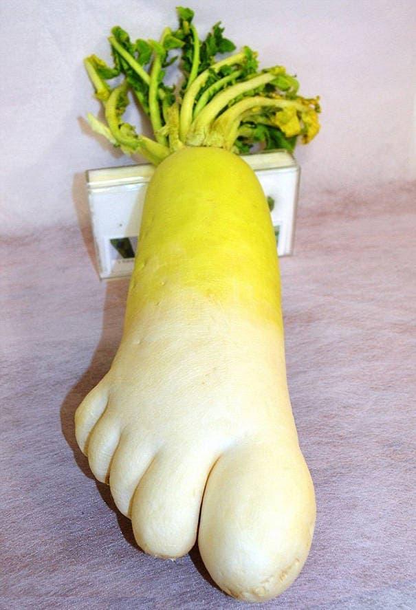 fruits-et-legumes-tellement-bizarres-13