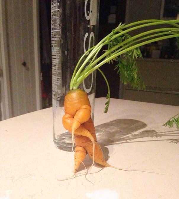 fruits-et-legumes-tellement-bizarres-15
