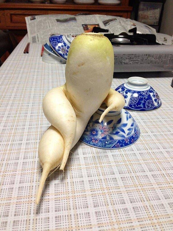 fruits-et-legumes-tellement-bizarres-9