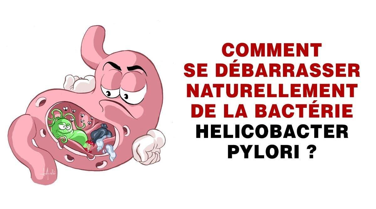 helicobacter-pylori-comment-se-debarrasser-naturellement-de-la-bacterie