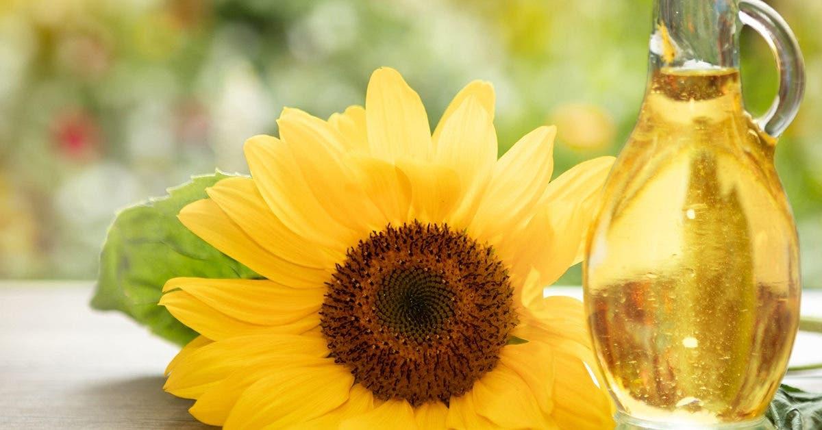 Comment utiliser de l'huile de tournesol pour lutter contre les vergetures ?