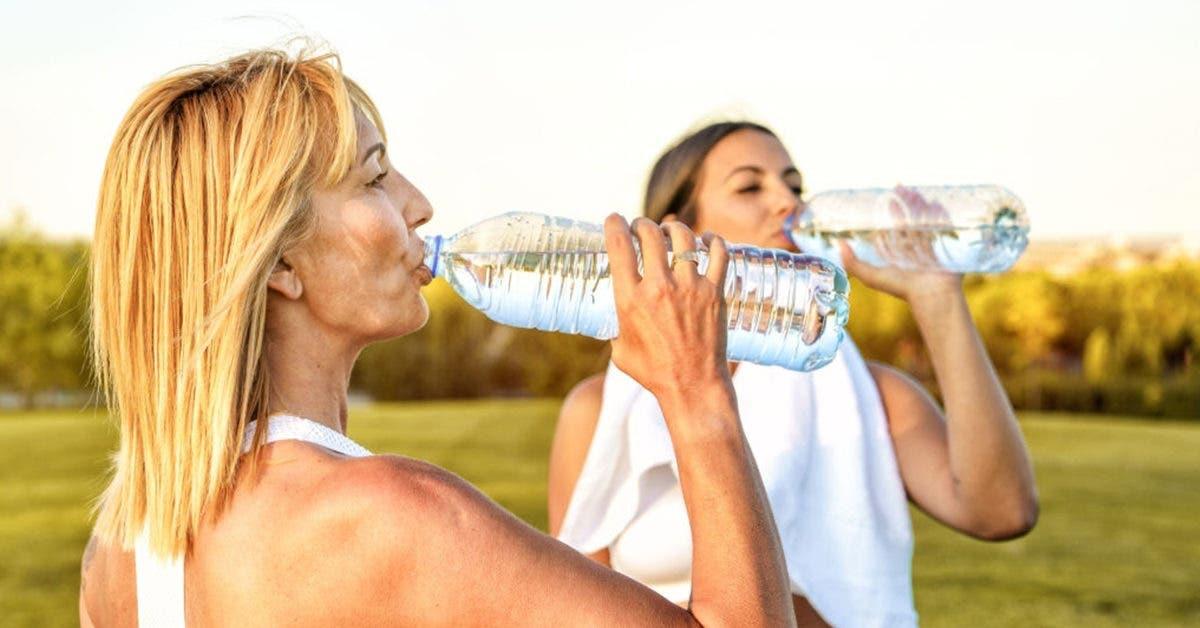 Comment rester bien hydraté pendant les fortes chaleurs de l'été ?