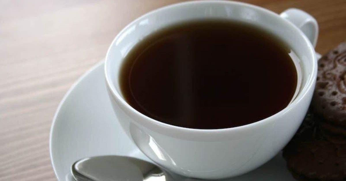 Il est facile de perdre 3 kilos par mois en ajoutant un ingrédient dans le café du matin