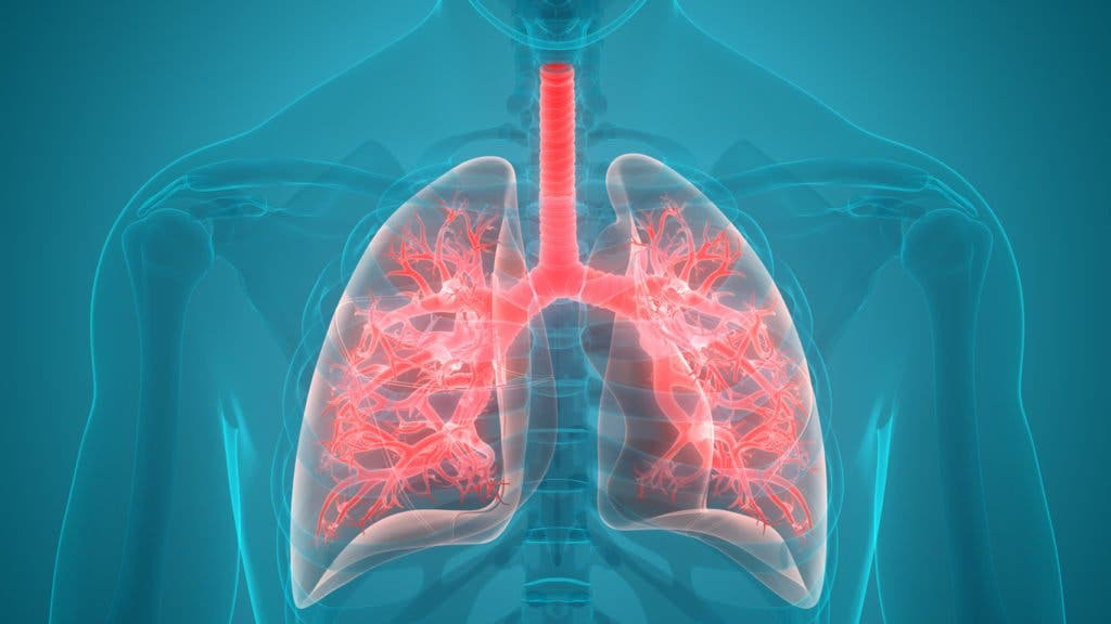 infection pulmonaire 1024x576 1