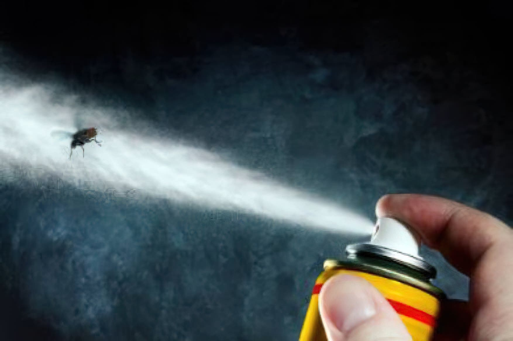 insecticide1