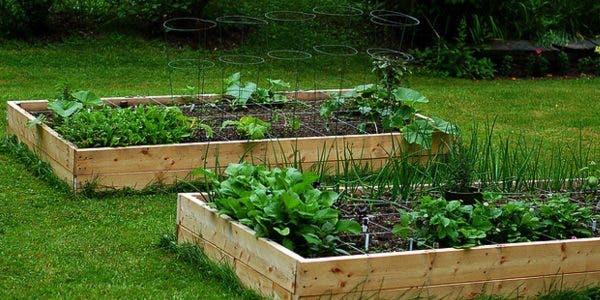 jardin-sureleve--comment-le-construire-en-6-etapes-simples