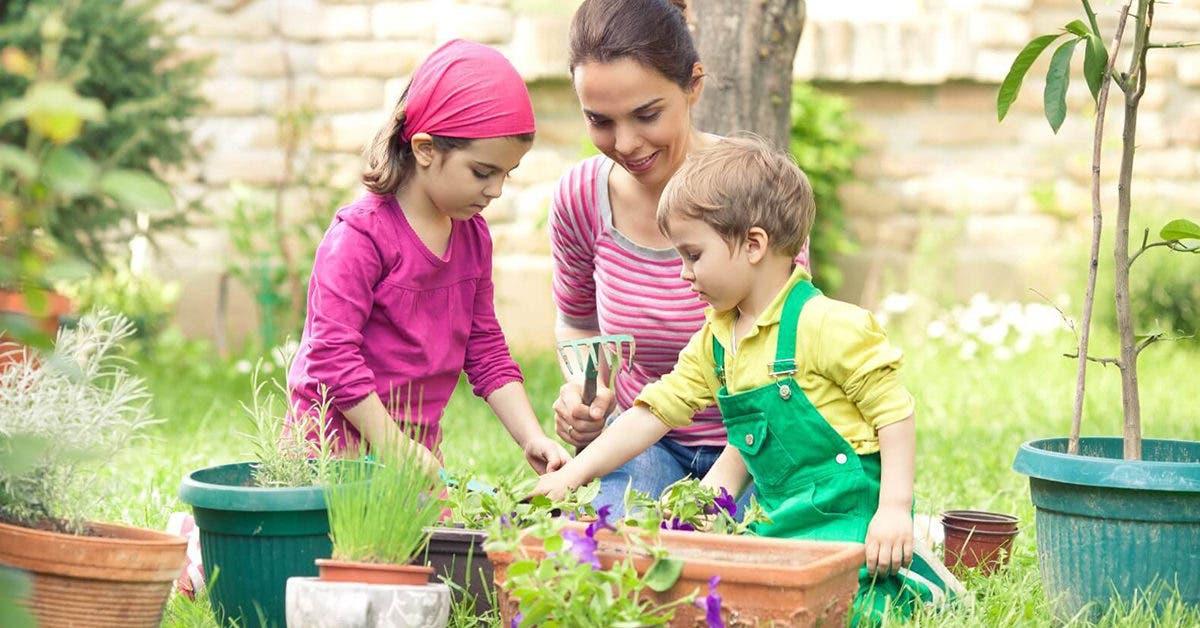 Le jardinage doit-il être une matière enseignée aux enfants à l'école pendant l'année ?