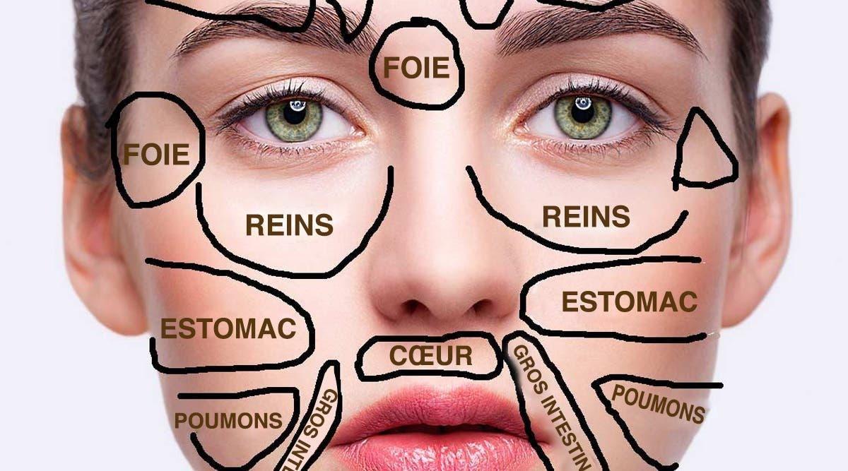 la-carte-du-visage-de-medecine-traditionnelle-revele-quelle-partie-de-votre-corps-est-malade-et-quelles-sont-les-solutions