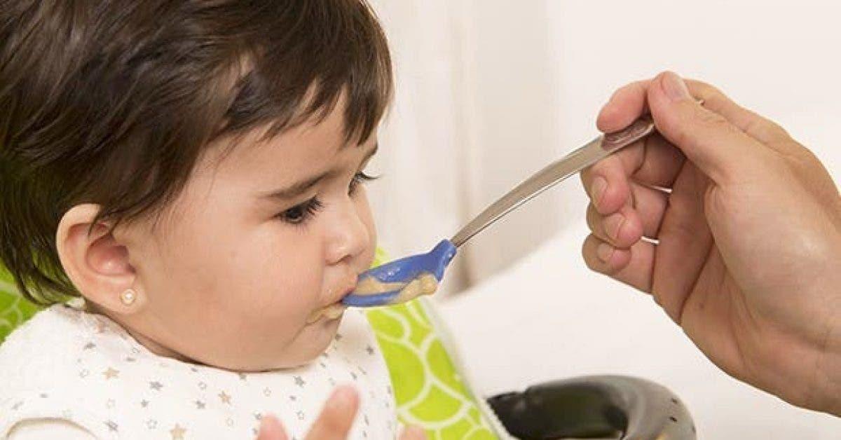 la diversification alimentaire et lapprentissage du gout chez bebe 1