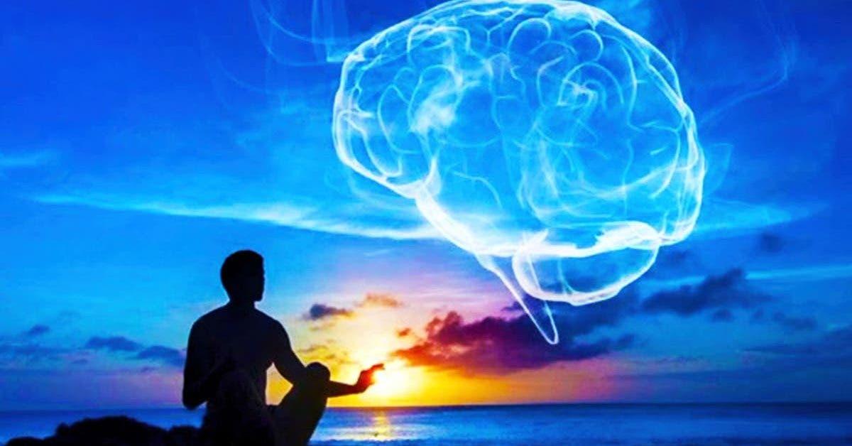 la meditation est capable de renouveler le cerveau en 8 semaines 1