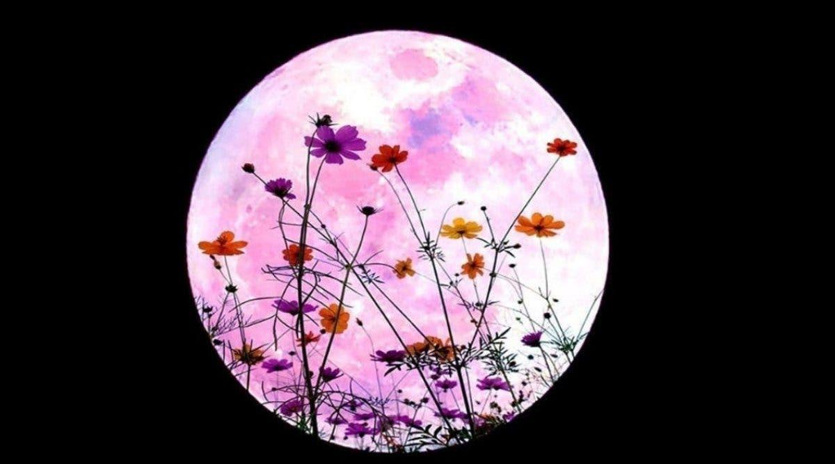 la-super-lune-apporte-une-energie-guerisseuse-pour-tous-les-signes-du-zodiaque