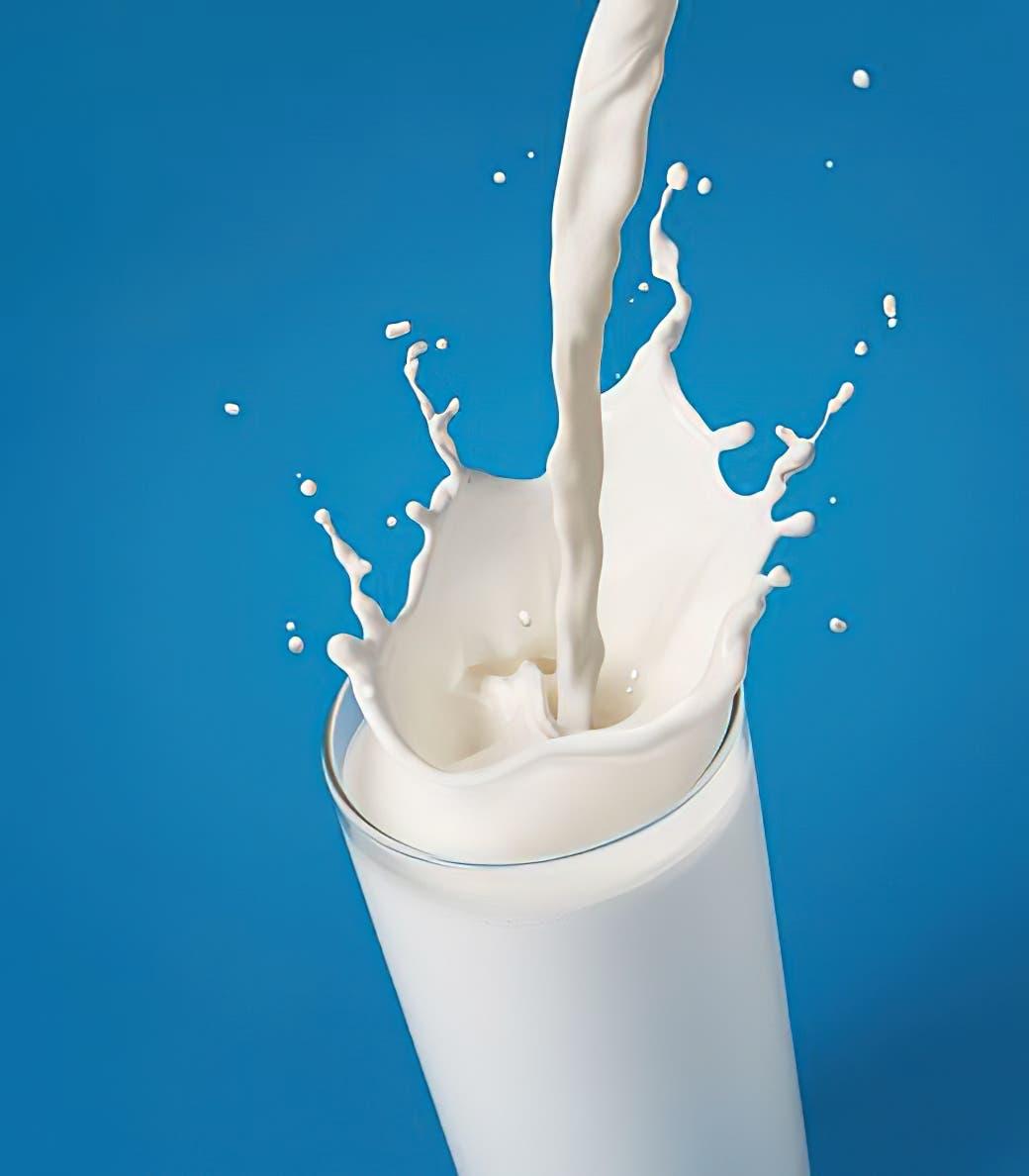 lait 2