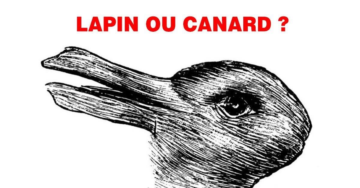 Lapin ou canard