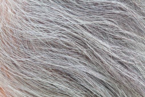Comment camoufler les cheveux gris avec du café