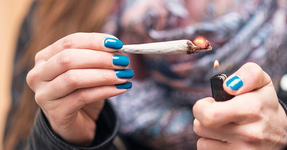 le cannabis serait moins dangereux que lalcool et le tabac dapres des etudes 1
