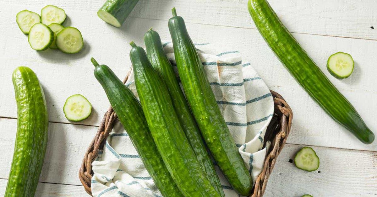 le-concombre-est-il-un-fruit-ou-un-legume