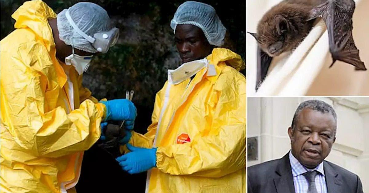 le-medecin-qui-a-decouvert-ebola-met-en-garde-contre-un-nouveau-virus-mortel-qui-pourrait-frapper-lhumanite