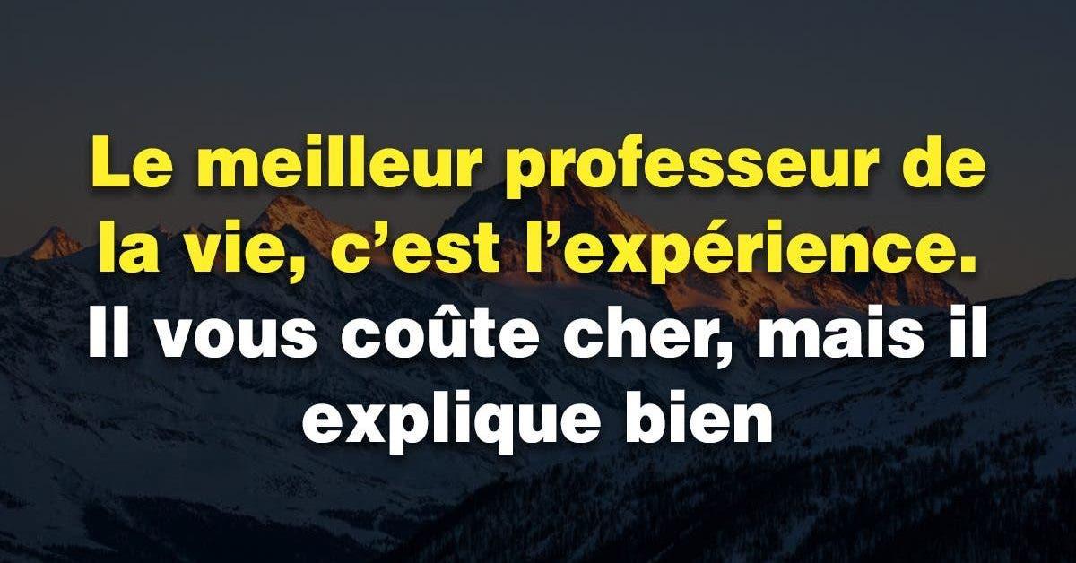 le-meilleur-professeur-de-la-vie-cest-lexperience-il-vous-coute-cher-mais-il-explique-bien