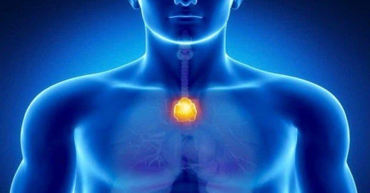 le point du bonheur dans votre corps neutralisez lenergie negative et renforcez votre systeme immunitaire 1