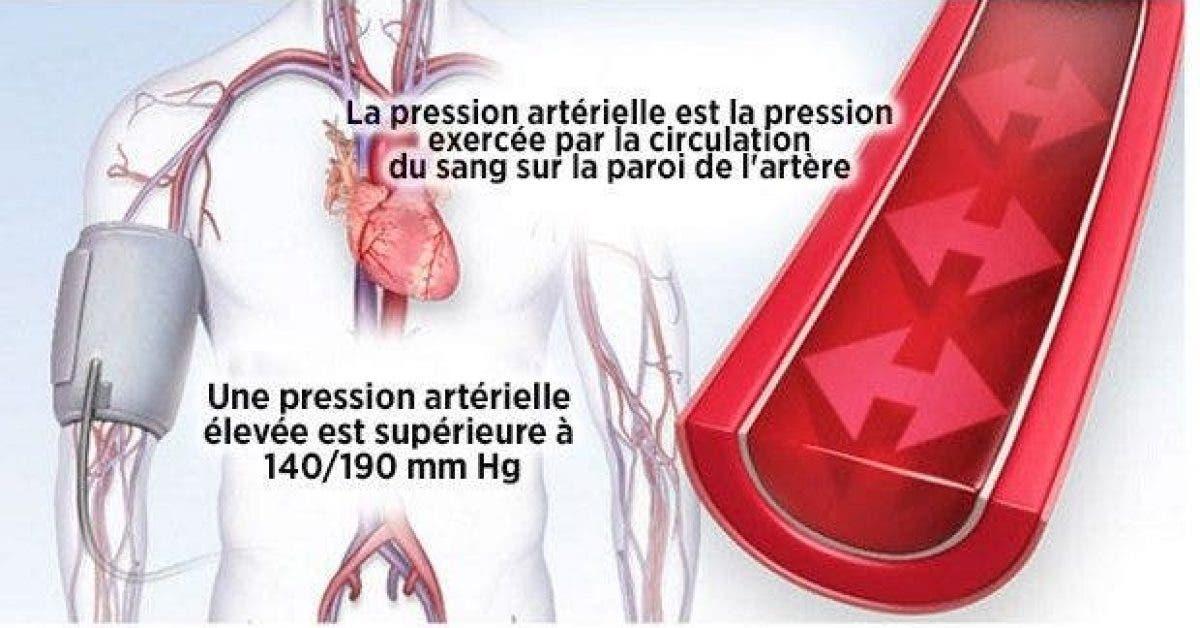 le secret pour faire baisser votre pression arterielle 1