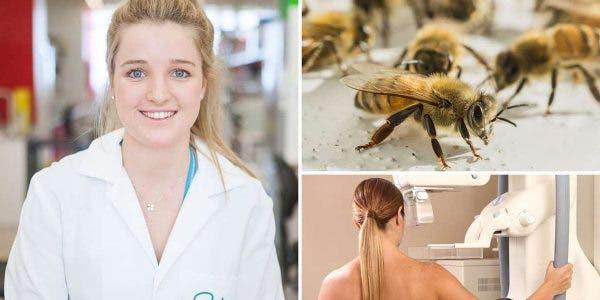 le-venin-des-abeilles-tuerait-les-cellules-agressives-du-cancer-du-sein-dapres-des-scientifiques