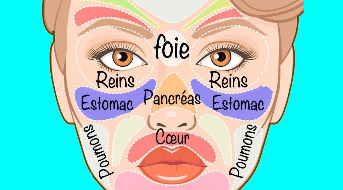 le-visage-est-relie-a-tous-les-organes-et-chaque-probleme-de-sante-est-visible-sur-le-visage