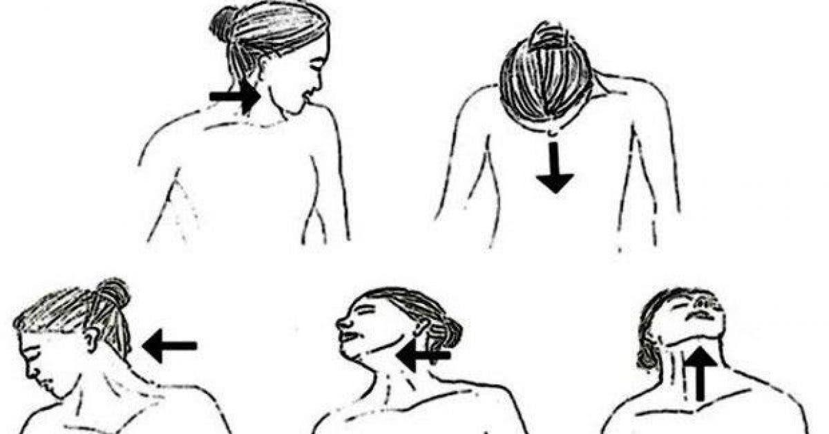 les 10 meilleurs exercices pour se debarrasser du double menton rapidement 1